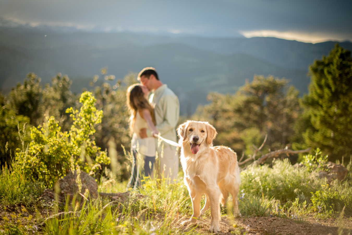Proposal | Flagstaff Mountain | Boulder