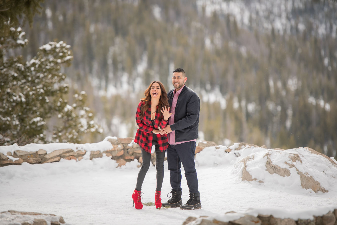 Proposal | Sapphire Point Overlook | Winter | February